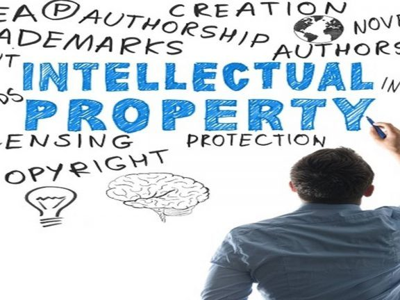 MEM Concessions LLC – Understanding Intellectual Property Rights